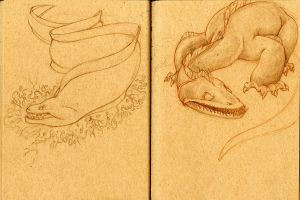 Monster Sketches by LauraDollie