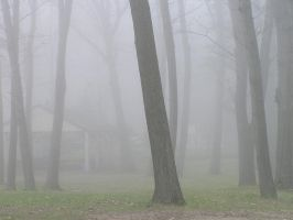 Foggy Background 2 by loopyker-stock