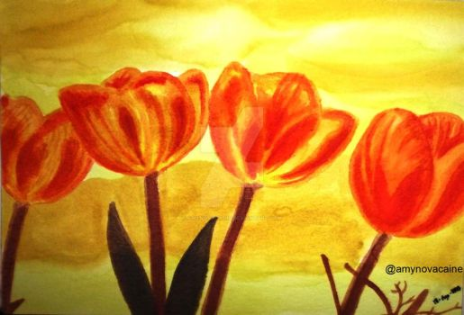 Tulips watercolor by AmyNovacaine
