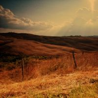 sole di toscana 3350 by bagnino