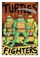 THE COLLECTED TURTLES FIGHTERS by Teagle