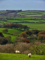 Rolling Hills of Devon by parallel-pam