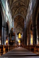 Uppsala Cathedral by maxim1990