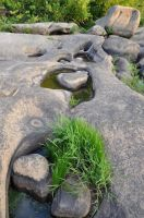 James River Park 18 by DandyStock