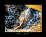 Mangled Mess by h-o-l-z