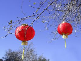 Chinese lanterns stock by chamberstock