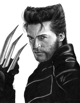 Wolverine by Tiofrean
