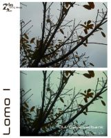 Lomo1 by zin29