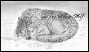 SleepyWolf by Kuutulensudet