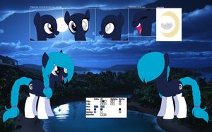 Moondust's official reference sheet by Starlollipop