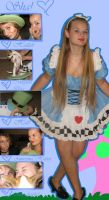 Alice In Shaynaland lol by Schismatic-Sha