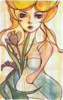 Tulip by PersueMe