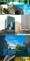 Photo Collection 2010 Q2 by fox-orian