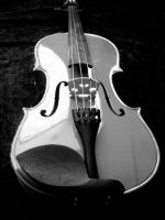 Black and white violin by MandaIrene