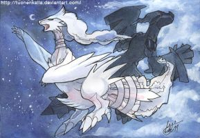 Zekrom and Reshiram by Tuonenkalla