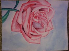 Water color Flower by Rollingboxes