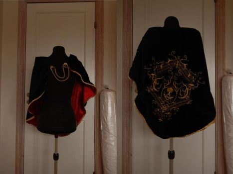 Haytham Kenway's Cape by Stacey-Marie