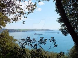 View from the Amphitheatre Woods, Mount Edgcumbe. by FluteJazz