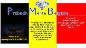 Prabodh Mehta Belgium Introduces Efforts with Gemb by PrabodhMehta