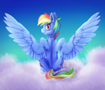 Rainbow dash by CottonCole