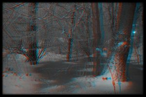 Frozen Pond in 3D by moonglowdude
