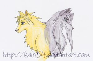 Cloud and Sephiroth wolves by kairi54