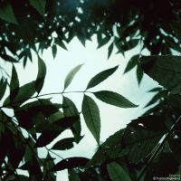 Powerful by PatrickRuegheimer