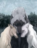 DotW   Nadina   Novermber MSE   My Snow Angels by FrostedCanid