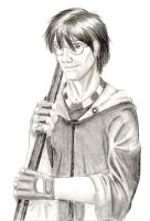 James Potter (Marauders 4/5) by HekateLesedi