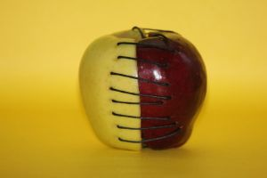 Apple (Yellow Background) by FlyteWizard