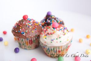 Cupcakes by lechatdodu