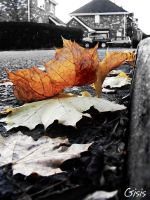 Autumn. by Gisis