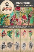 5 Vintage Tropical Transfers + Brushes by Whimsical-Adventure