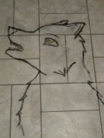 Wolf in Bathroom by oORocianaOo