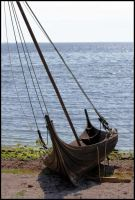 Viking ship by bakabobo