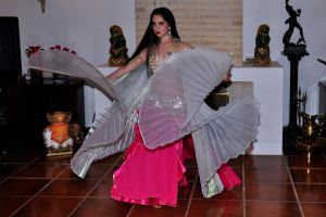 Wings Belly Dance 10 Stock by LoryenZeytin