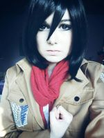 Shingeki no Kyojin Cosplay: Mikasa Ackerman 2 by SongstressFlowerMiku
