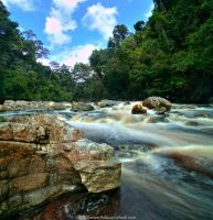 Feel The Nature by firdausmahadi