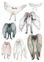Mothman sketches by V-L-A-D-I-M-I-R