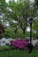 Central Park 27 by LucieG-Stock