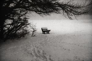lonely is the song i sing by RickHaigh