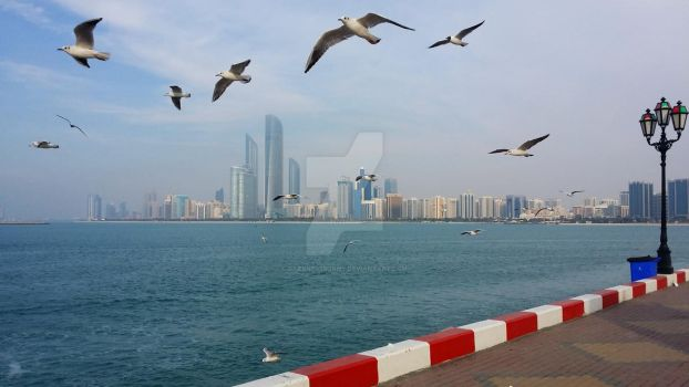 See-gulls. by DarknessBunny