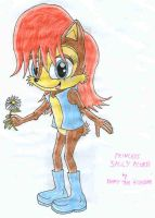 A picture of Princess Sally by Kimmy-the-Echidna