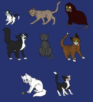 The Master Regeneration Cats by allissajoanne4