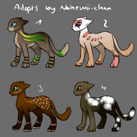 Cat Adopts - closed by Nahemii-chan