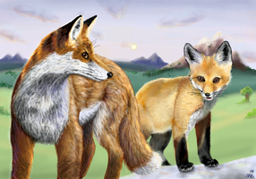 Foxes by Sabientje