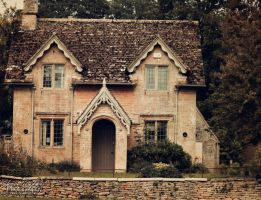 Old House by Clerdy