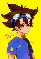 digimon: Tai by deaeru