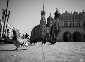 Cracow by Lasiu7