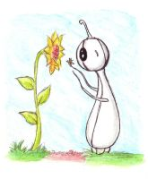 Quibble and the Sunflower by MarissaWalker